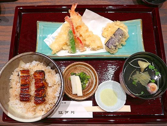s-江戸川IMG_5518