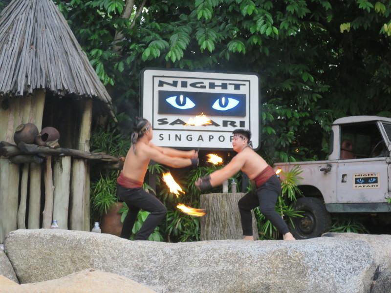 ナイトサファリ 火のショー