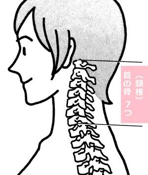 katakoritaisou(27).jpg