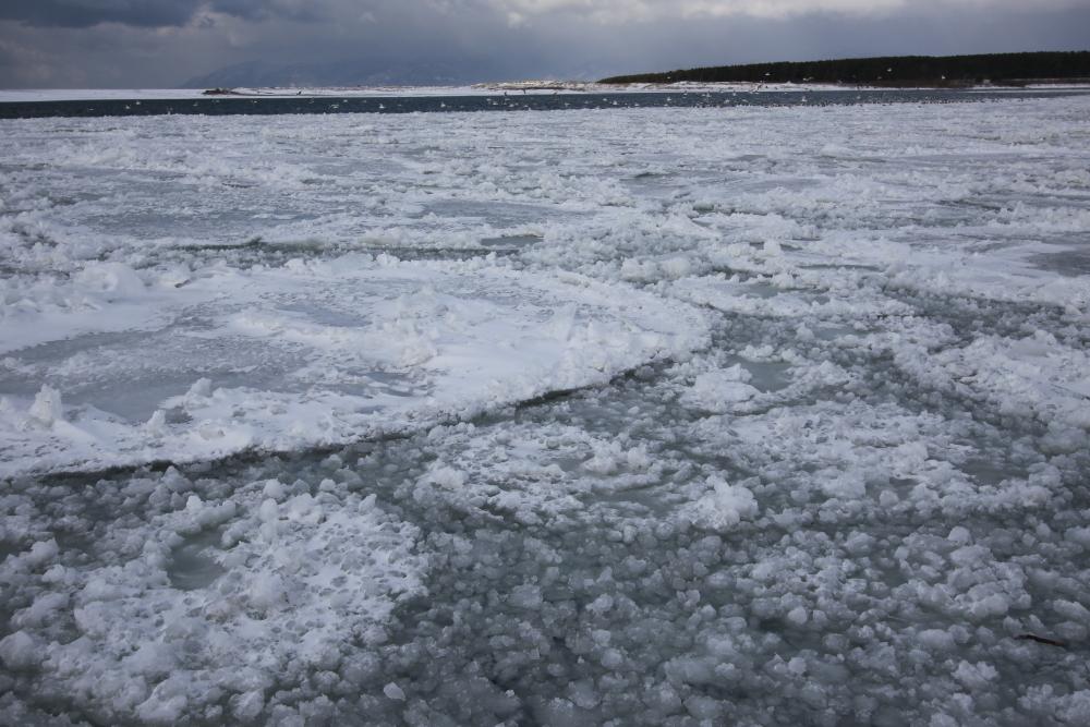 IMG_3818米代川結氷