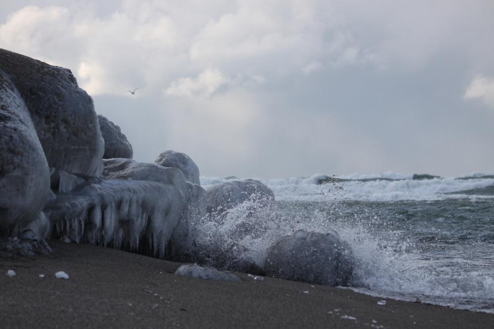 IMG_3745米代川結氷