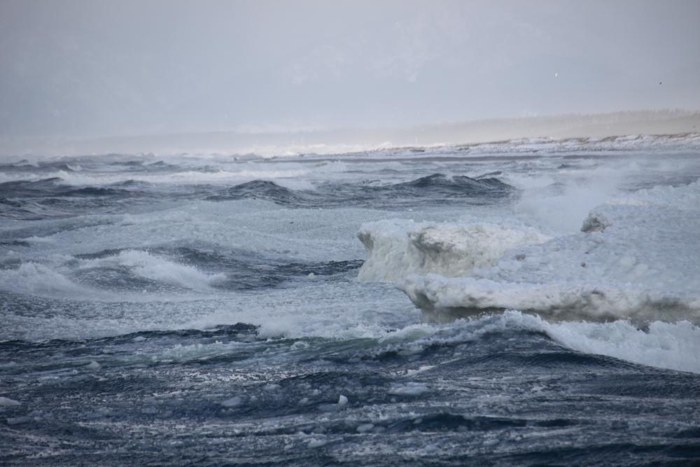 IMG_3694米代川結氷