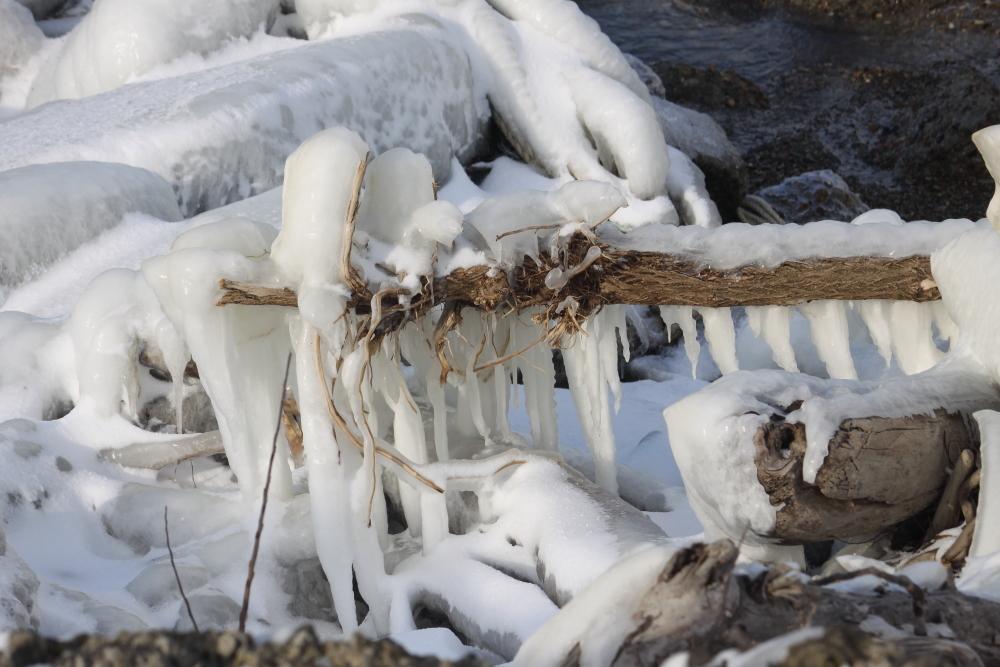 IMG_3660米代川結氷