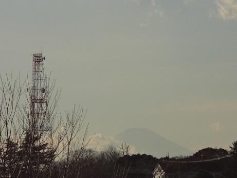 根岸森林公園からの富士山