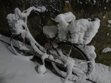 自転車積雪