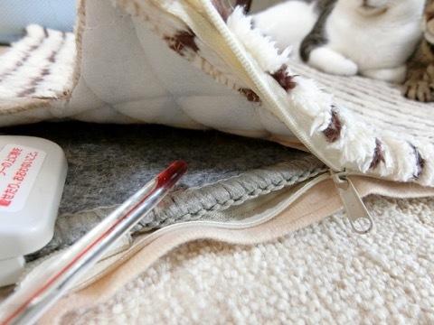 180106-3carpet