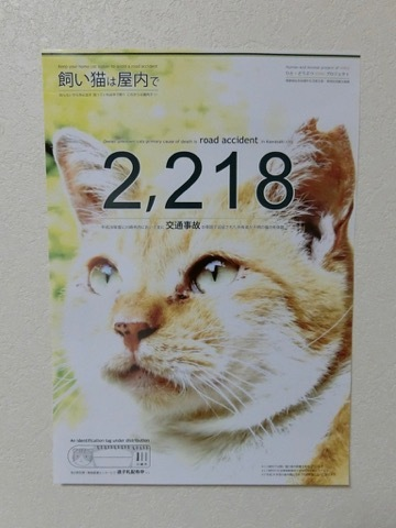 180131poster
