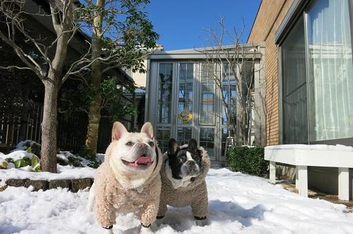 ふるうた雪遊び
