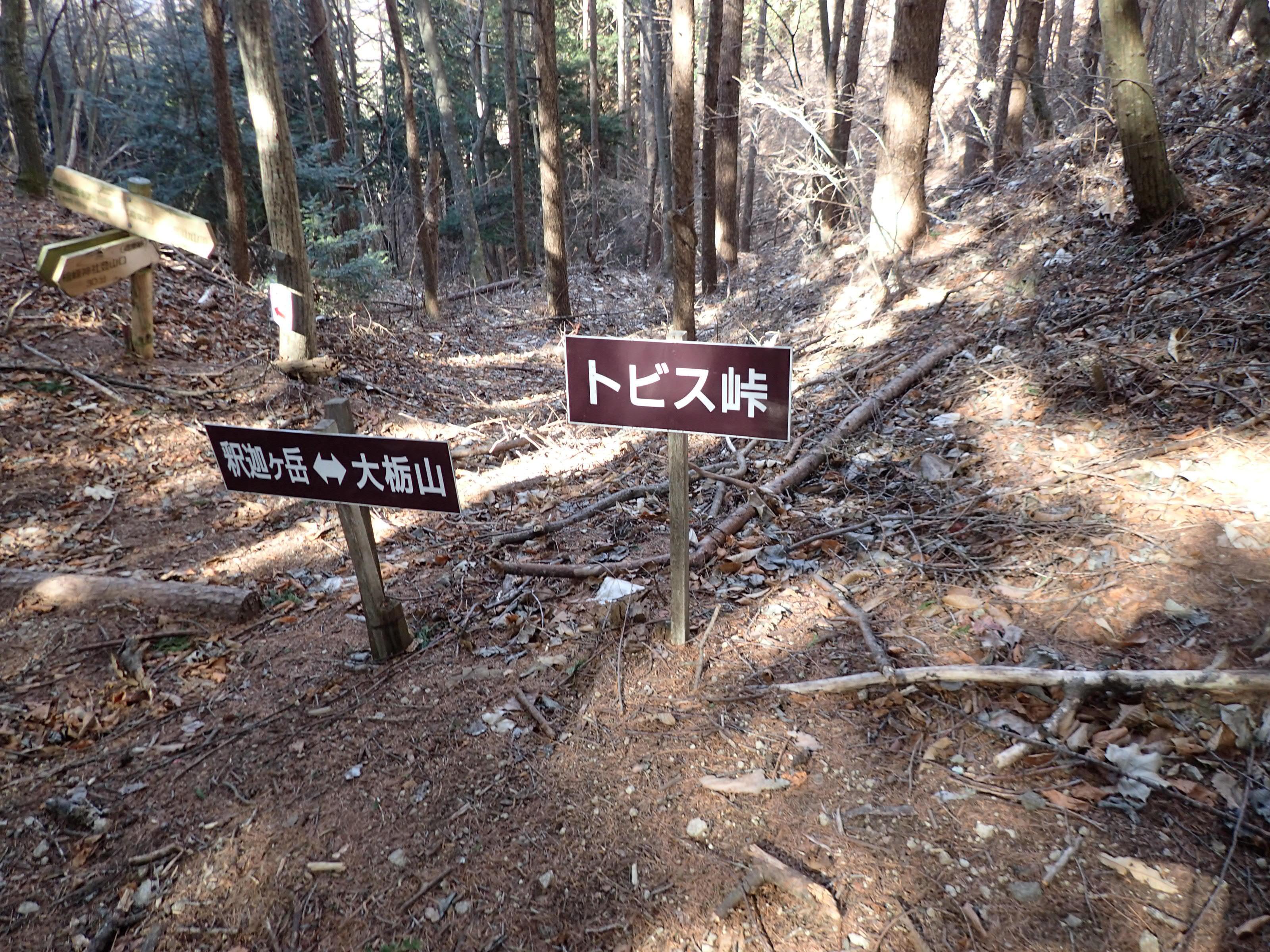 P1210093.jpg