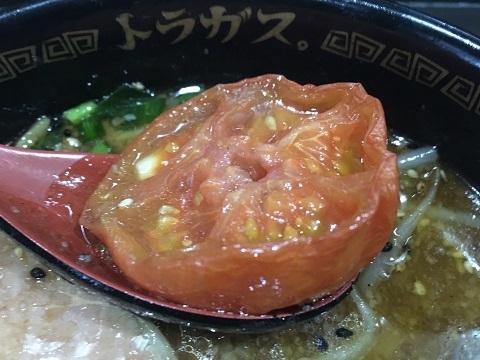 トラガストマト