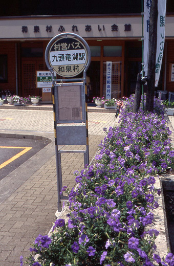 19960728長良川081-1