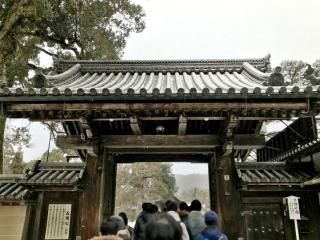 京都ツアー (18)