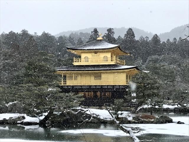 京都ツアー (20)