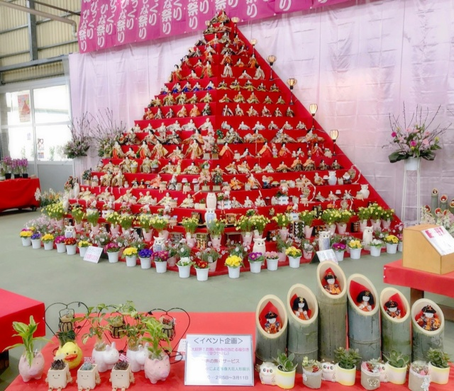 鴻巣びっくりひな祭り2018 (14)