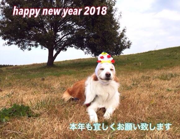 20180102002507dc6.jpg