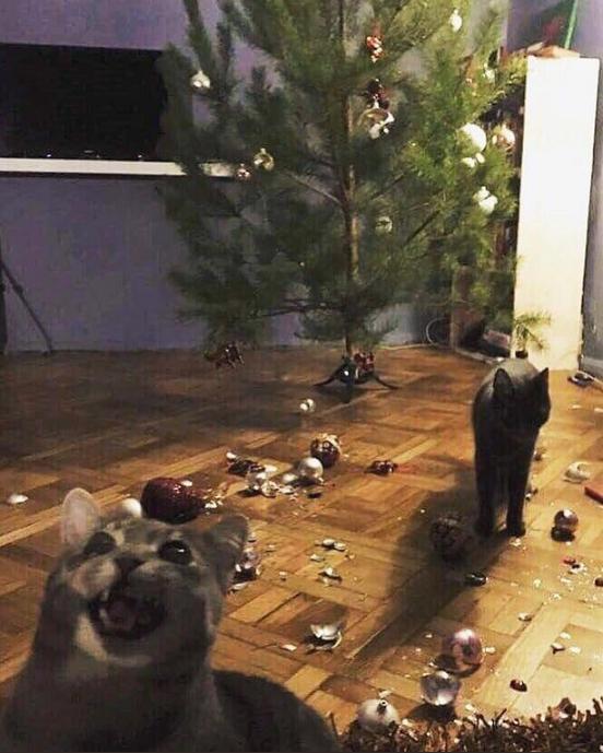 クリスマス終了のお知らせ