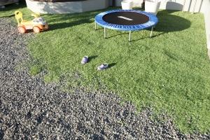 (置いただけ)リアル人工芝を砂利の上のそのまま敷いてみました。施工後画像4