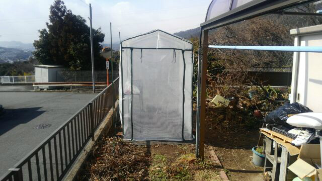 ss-温室1