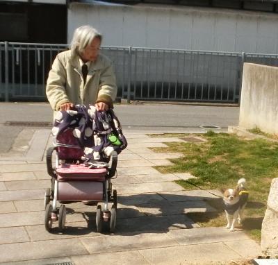 180208-母とコタちゃんと散歩-5