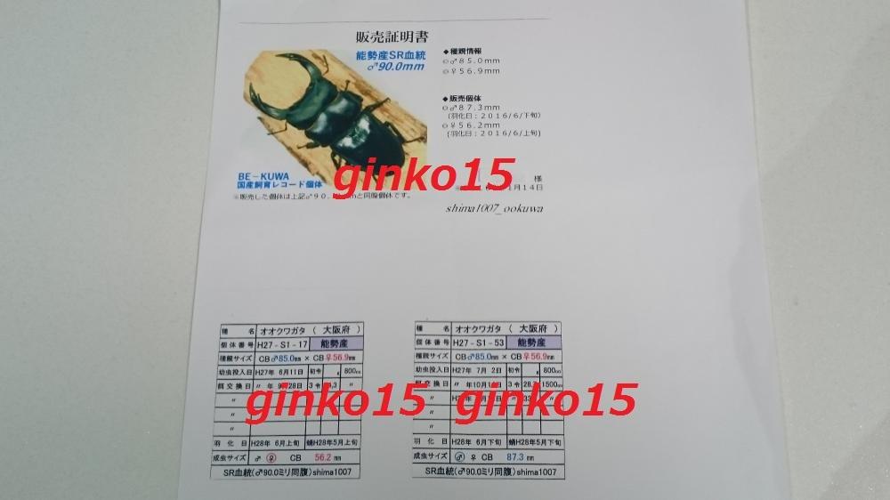 DSC_4764_convert_20171231205724.jpg