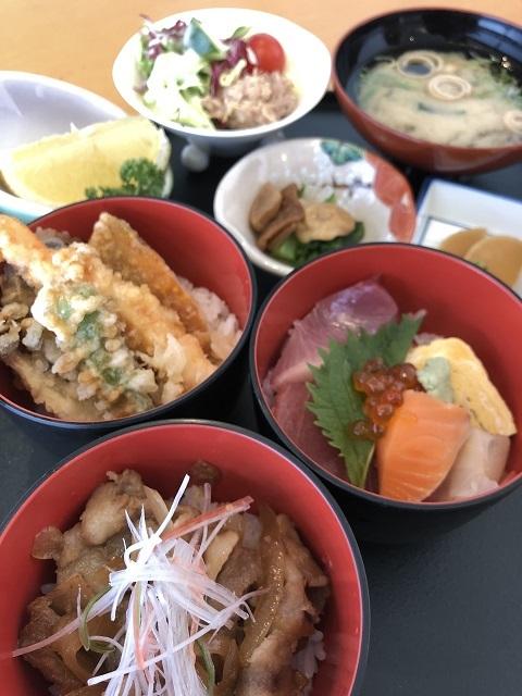 和食 興味楽 ミニ三食丼セット