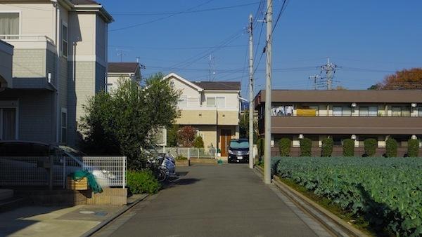 狛江市 「中村石塚」