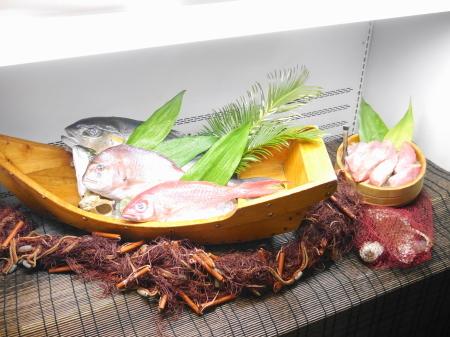 入り口で選ぶ魚