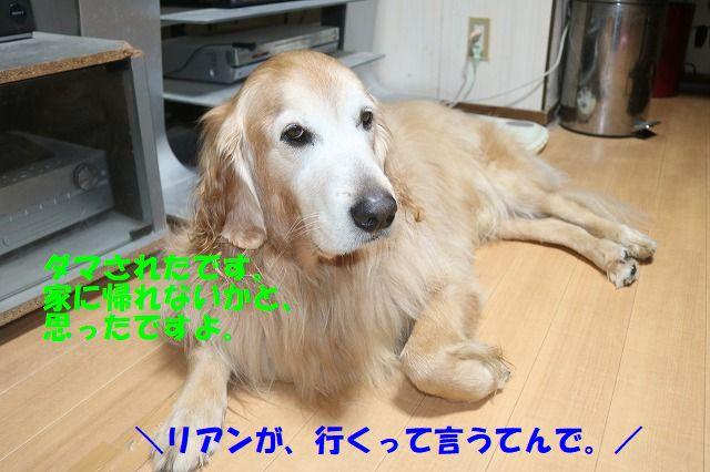 IMG_1248_20180115233811307.jpg