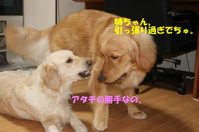 IMG_9440.jpg