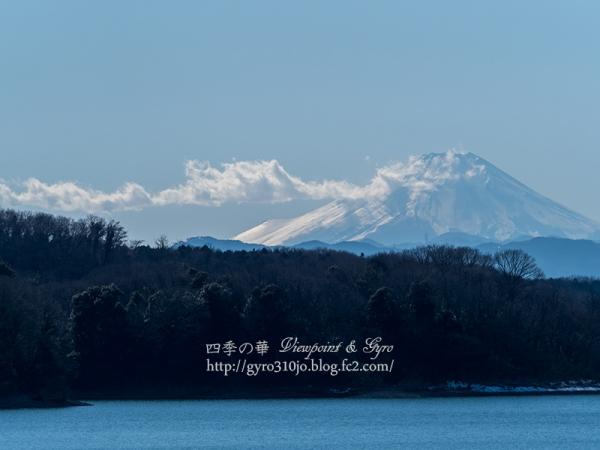 狭山湖 B