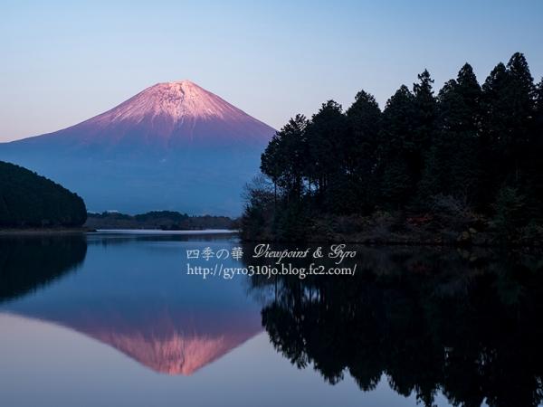 田貫湖 I