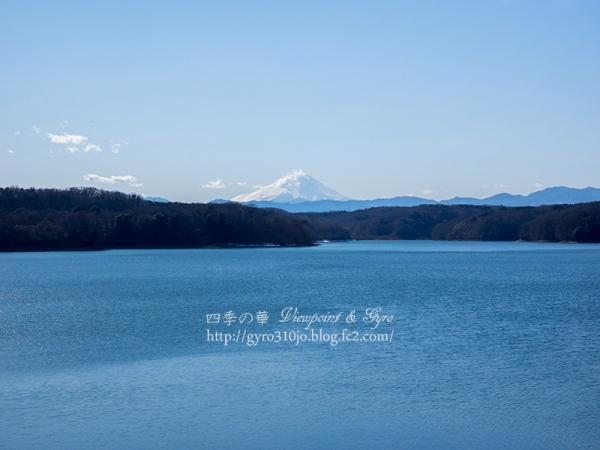狭山湖 A