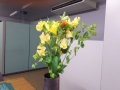 机上の花:2018年1月