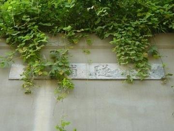 徳浦隧道03