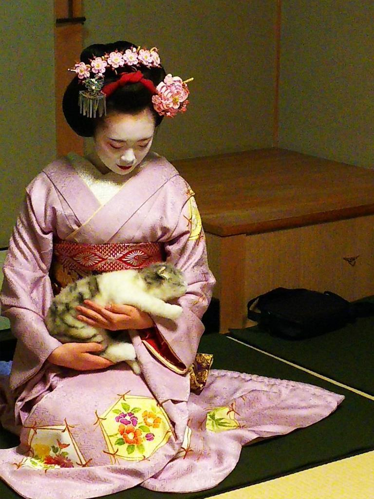 180207zui_ichi_cat.jpg