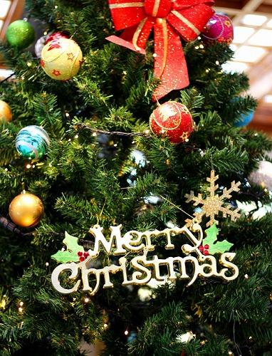<Merry Christmas>白水館で過ごすクリスマス♪