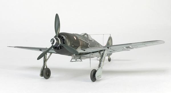 Fw190A-8R2 (48)