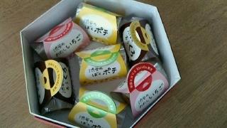 康平彼女 藤井希望ちゃんのお土産 ワンちゃんお饅頭