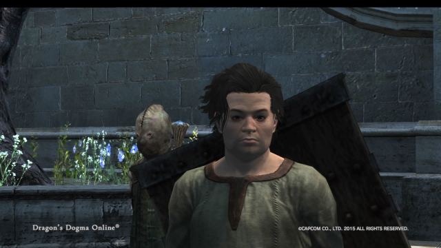Dragons Dogma Online__6