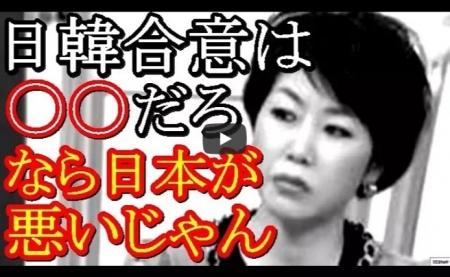 【動画】金慶珠氏、生放送で日韓合意をひっくりかえす最低反日発言!意味不明な韓国擁護で共演者からボコボコに論破 [嫌韓ちゃんねる ~日本の未来のために~ 記事No19039
