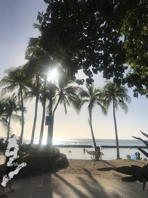 hawai1.jpg