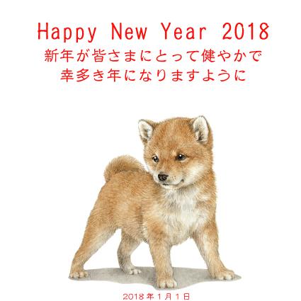 201801020144341e8.jpg