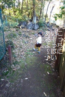 s-DSC02699.jpg