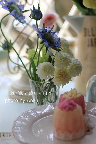 180112 花