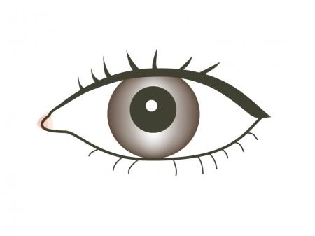 目 eye