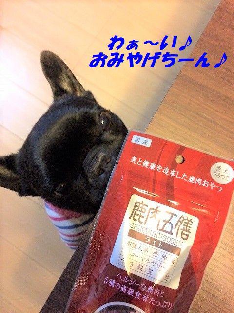 IMG_8077 - コピー (2)