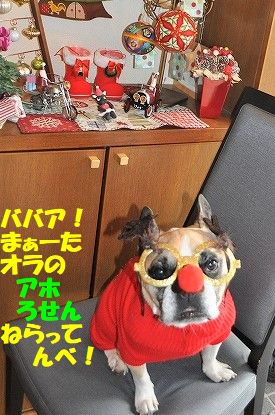 DSC_0309_20171225092305534.jpg