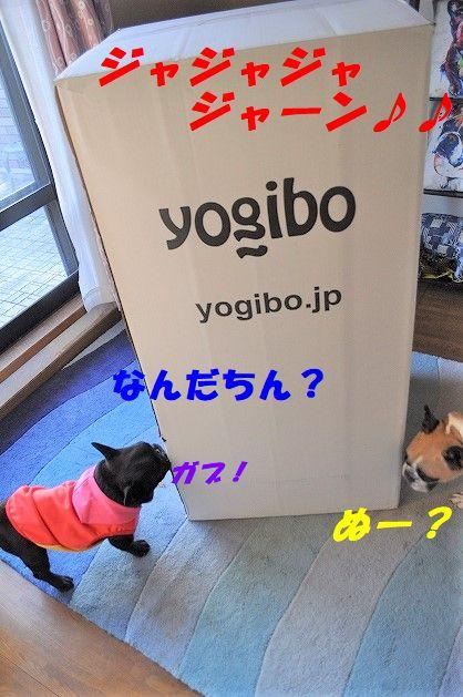 DSC_0351_20180112134712694.jpg