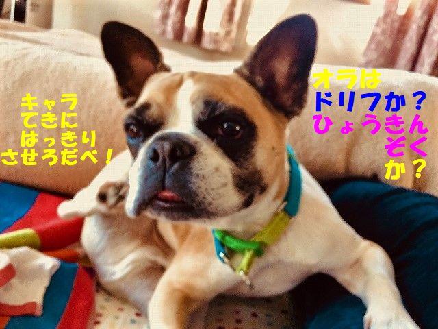 FullSizeR_20171128092301e65.jpg