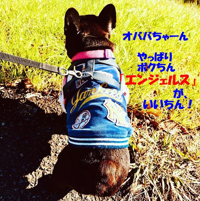 IMG_6985.jpg